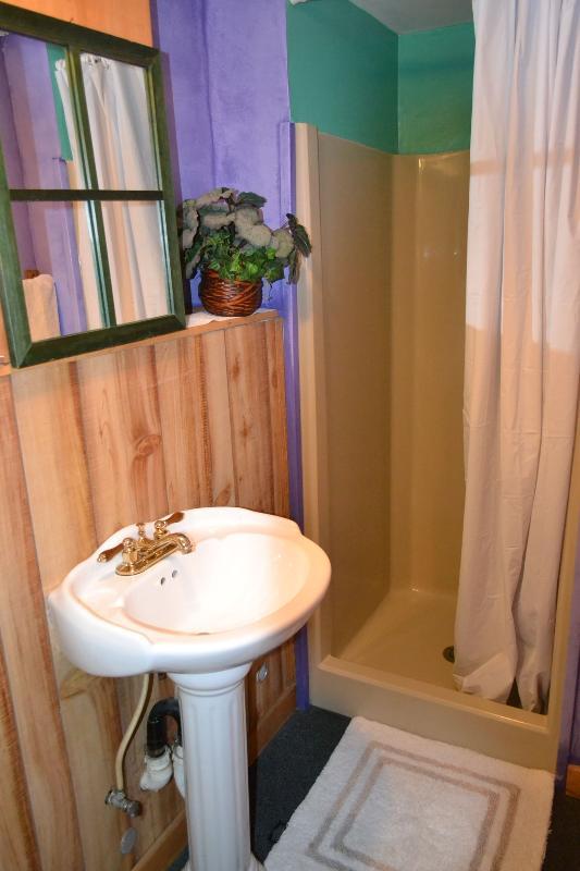 Bathroom (main level)