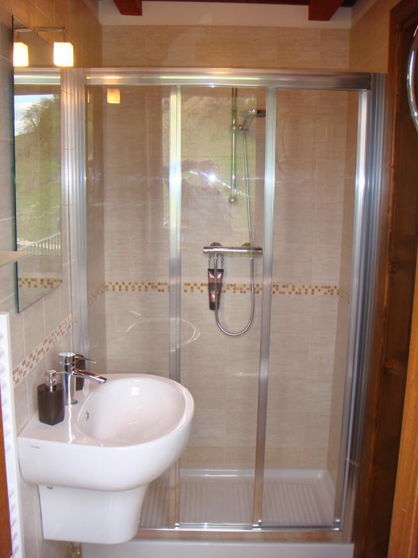 Rondine bathroom - glass fronted walk-in shower