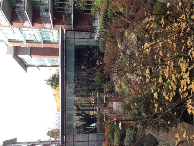 Bellissimo balcone con cortile cascata