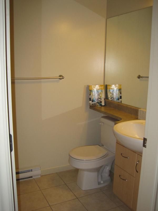 un'altra vista della toilette