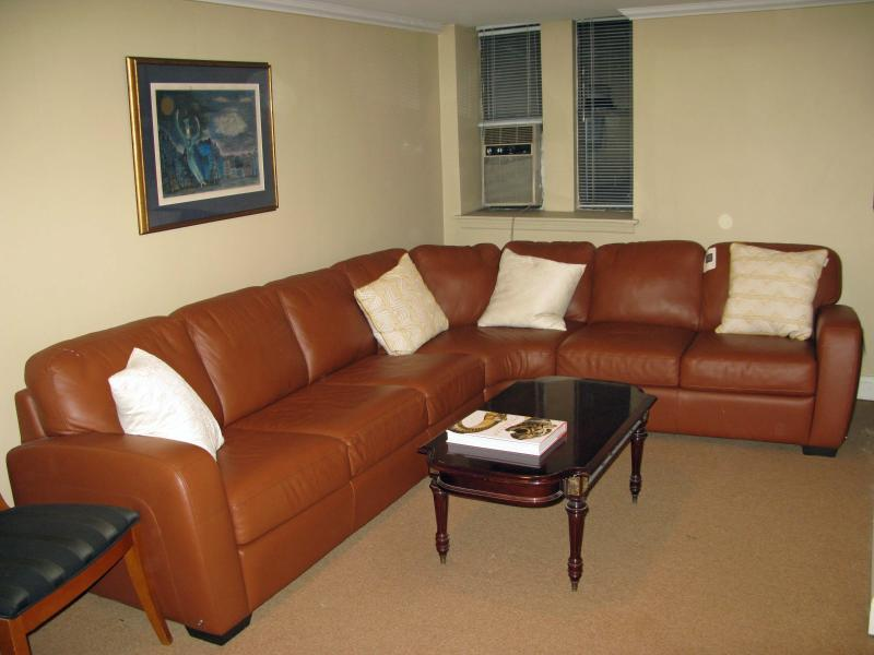 leather sectional with sofa bed