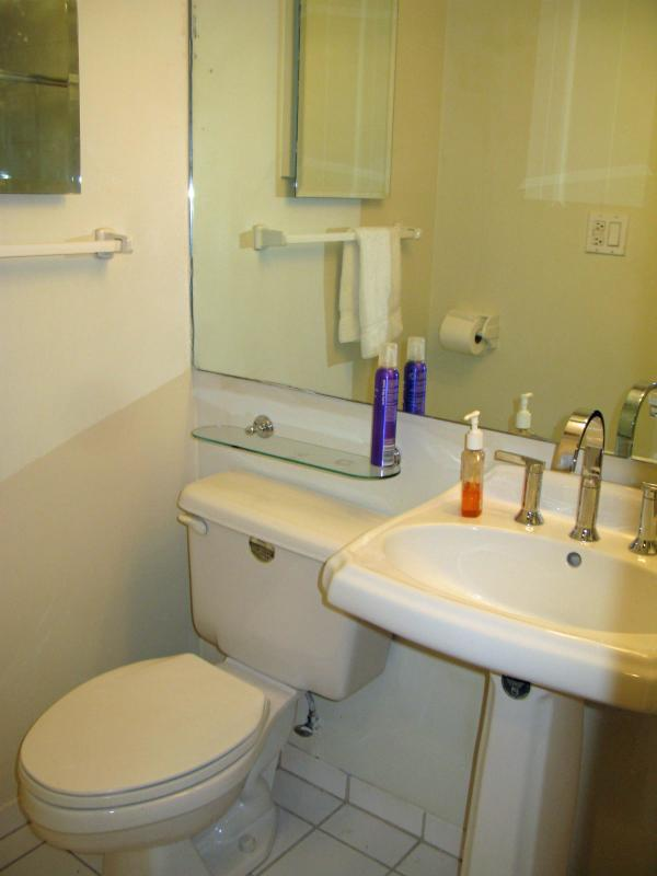 Hall bathroom with stall shower