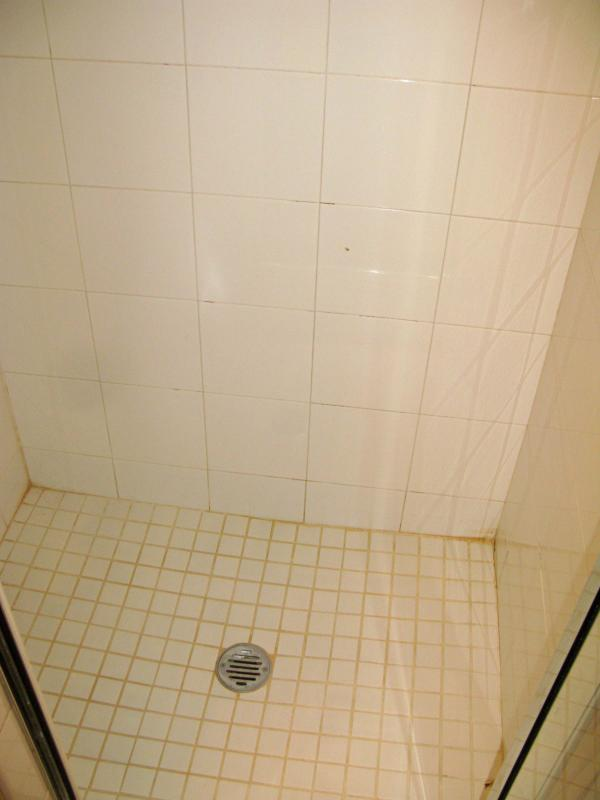 Stall shower in hall bathroom