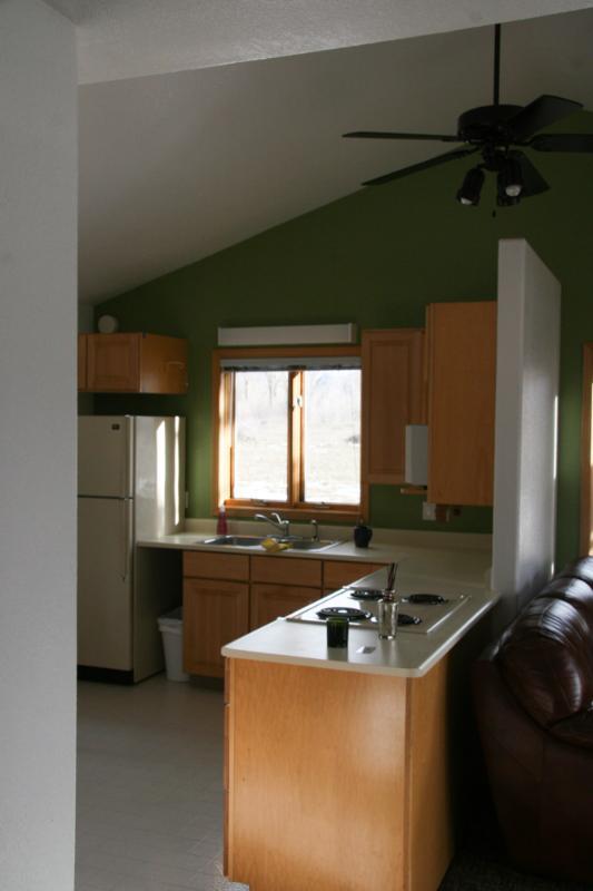 stove/bar area