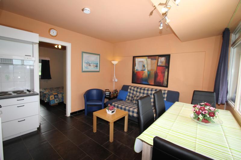 Holiday rentals Belgian coast - 1 bedroom flats, location de vacances à De Haan