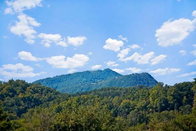 View of Bluff Mountain