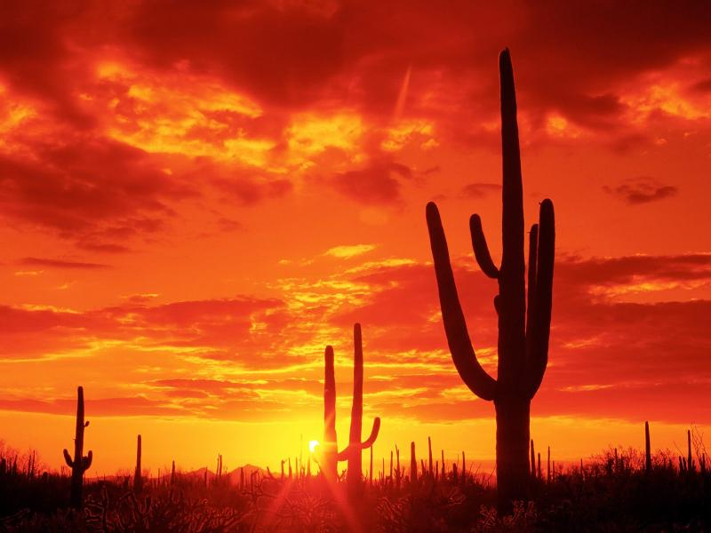 Enjoy your stay in the beautiful state of Arizona!