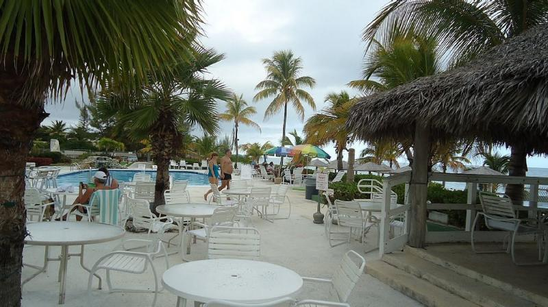 Coral Beach Bar Area