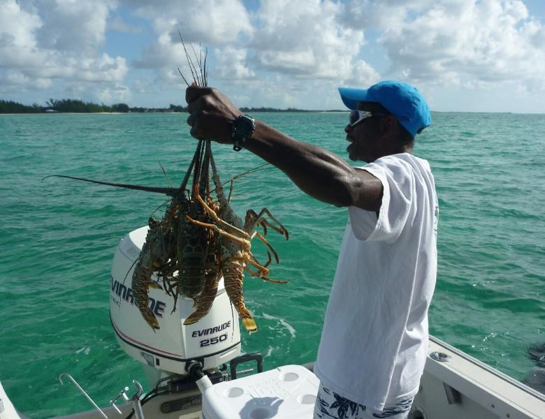 Buy $5 fresh lobster right at the beach