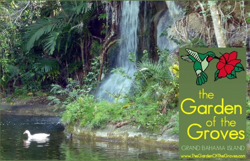 The Garden of the Groves
