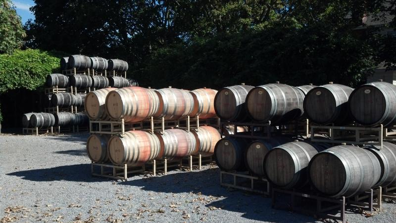 Barrels at nearby Lenz Winery