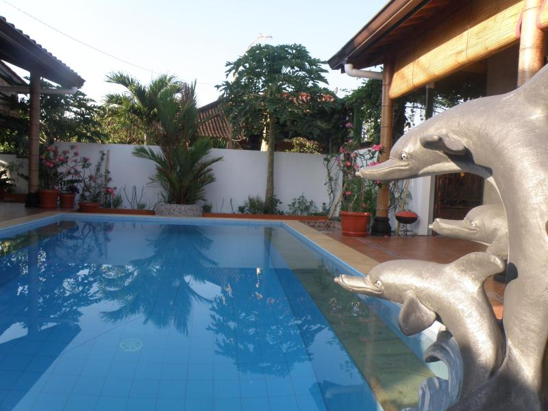 Your Private Swimming pool-always clean and shining blue clear..