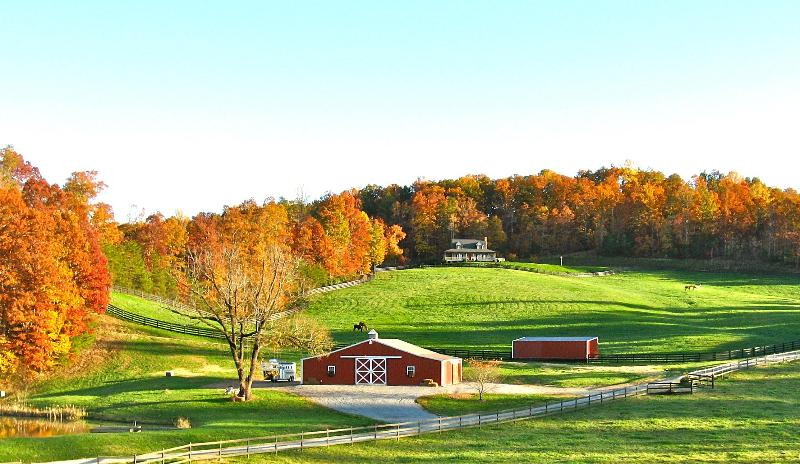 Welcome! This 80 acre private estate, equestrian center,nature preserve is yours to explore & enjoy.