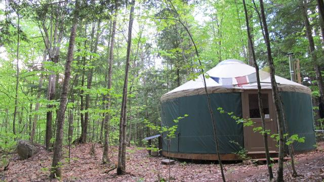 Let the forest and the nearby spring fed mountain brook bring you peace at Mt.Brook Yurt