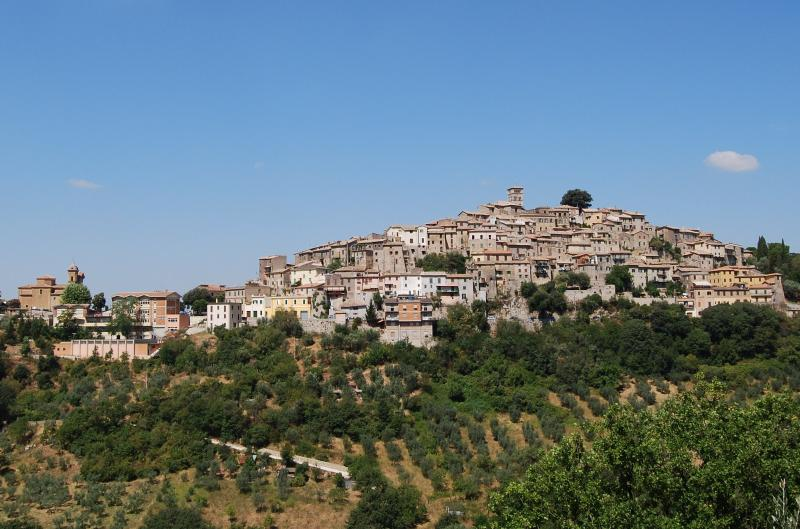 Il Sogno: Serene Elegance-Medieval Town near Rome, vacation rental in Province of Rieti