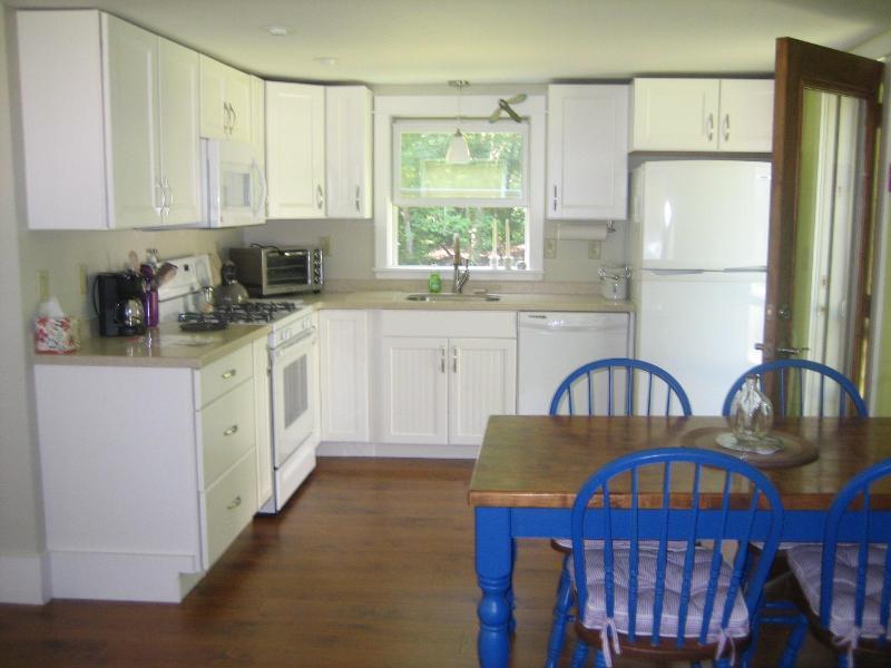Cozinha completa com fogão a gás, forno, máquina de lavar louça e microondas; pratos e utensílios