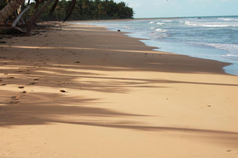 The beach a block away!