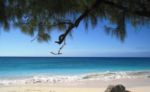 Maxwell Beach, footsteps away