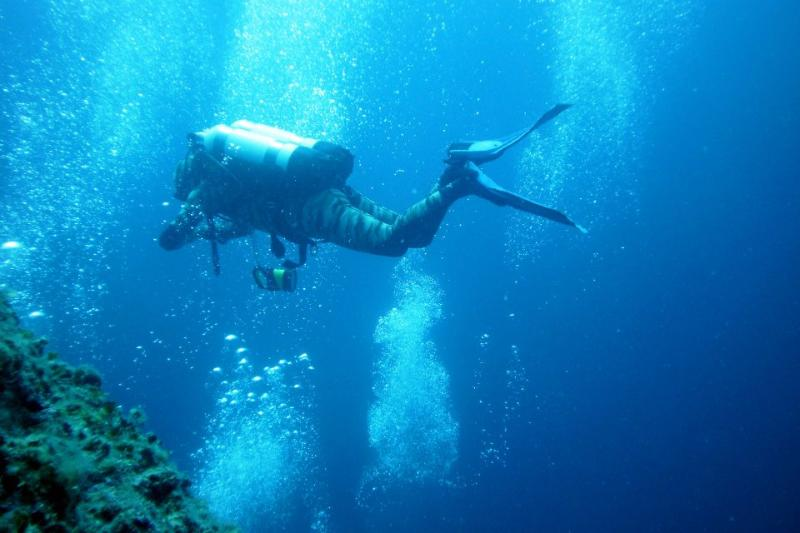 diving excursions available