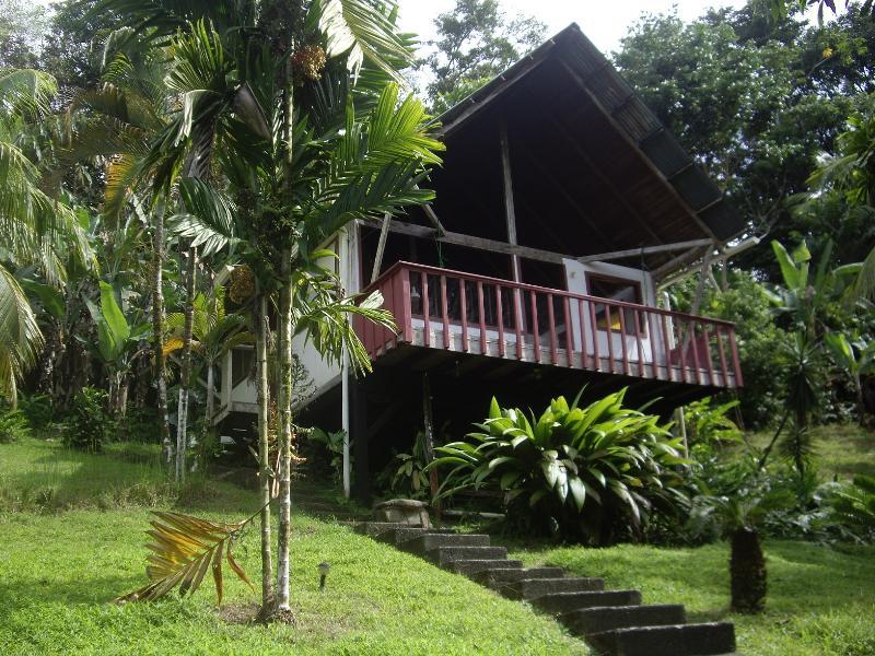 Pavones Jungle Cabin