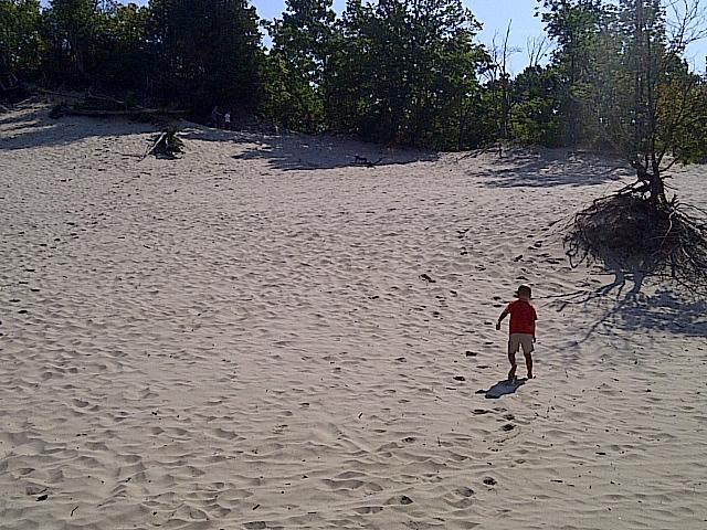 Diviértete en las dunas de arena