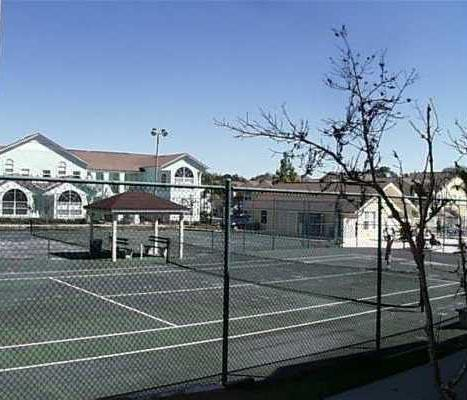 Tennis and vollyball courts that face the condo