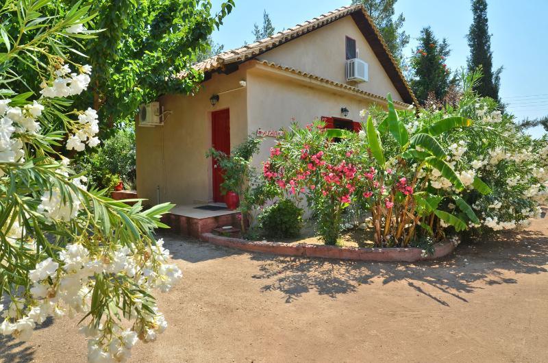 Therianos villa Agapi, holiday rental in Loucha