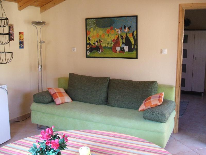 sofa-bed in livingroom/kitchen