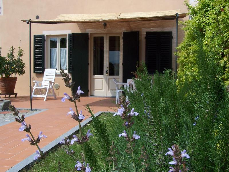 Il Casale in the countryside - Just 5 min. From Lucca, holiday rental in Lunata