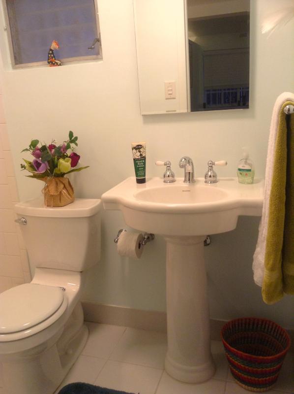 Salle de bains récemment transformée. Serviettes fournies.