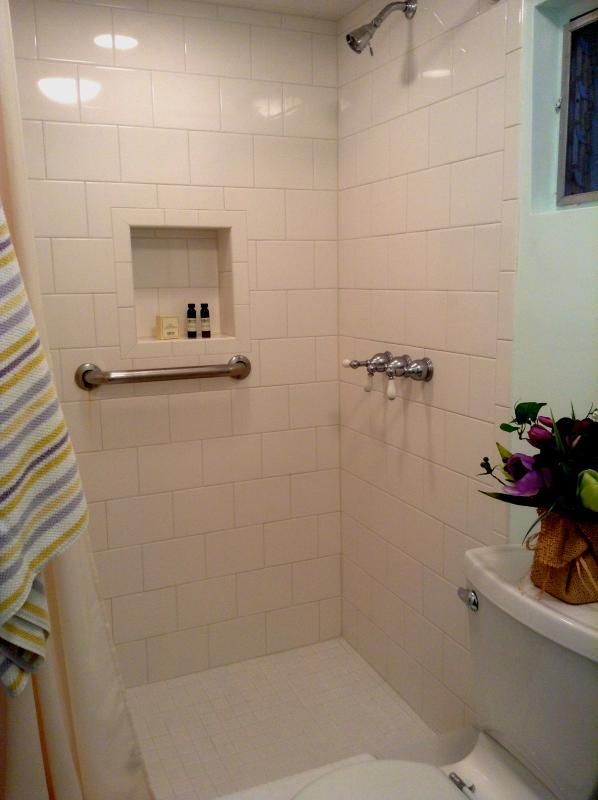 Douche spacieuse récemment rénovée. Articles de toilette sont gratuits.