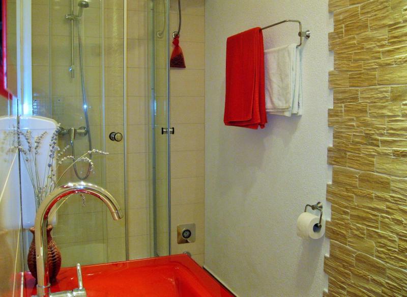 Soap, shampoo, shower caps, plenty of towels, hairdryer...