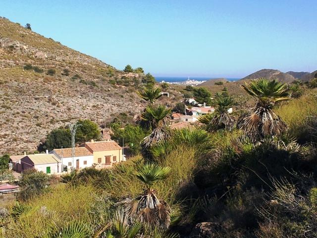 Las Jordanas y Cabo de Palos al fondo/background