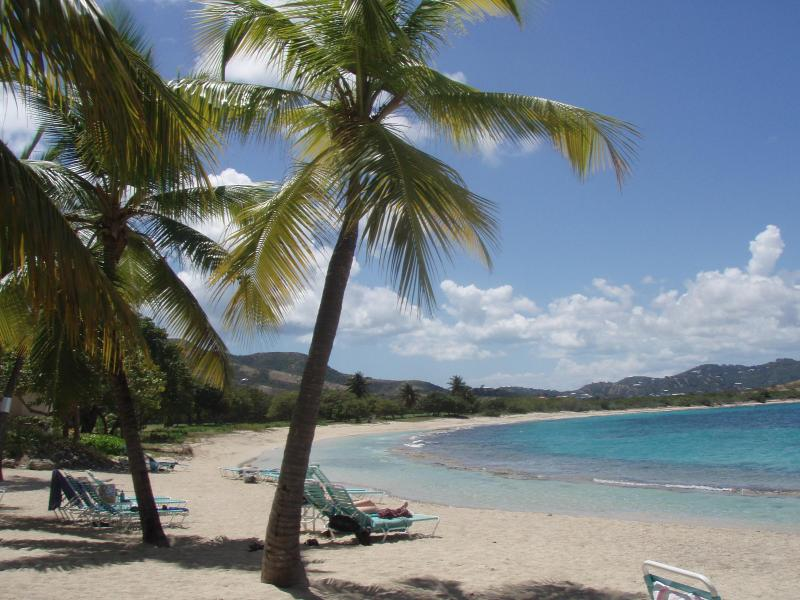 One of St. Croix's beautiful beaches