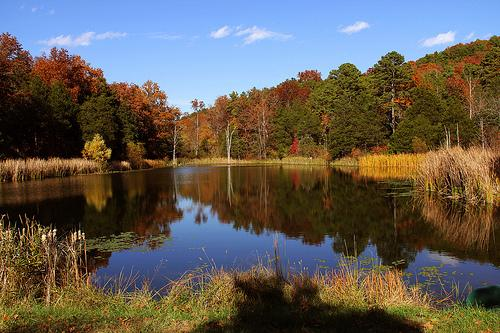 'The Valley' on-property small lake