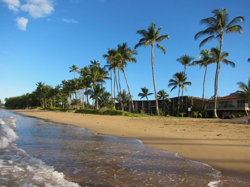 Uncrowded beach out front Hale Kai O Kihei