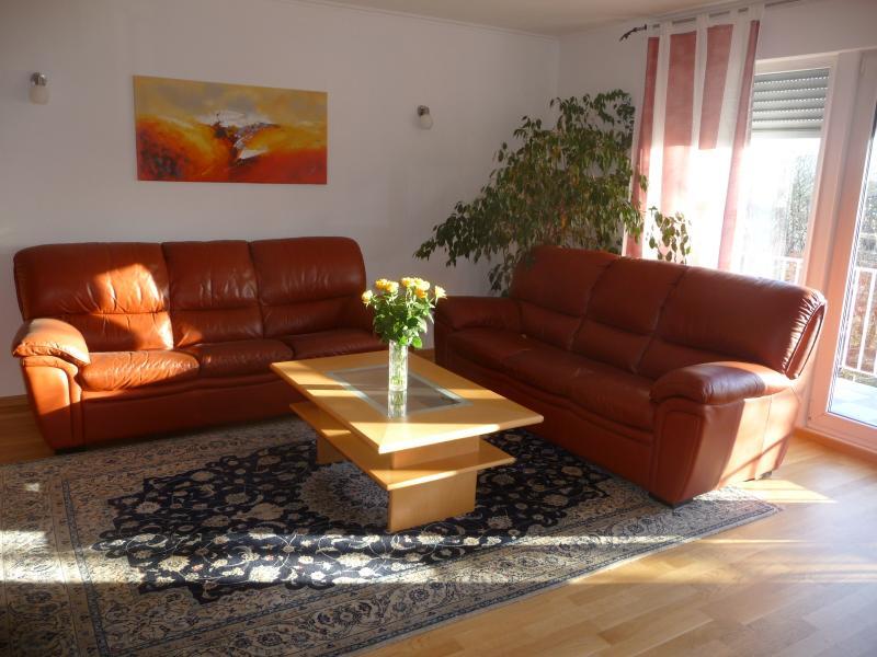 Luxurious Apartment, location de vacances à Bonn