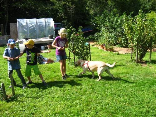Tir à la corde dans le jardin