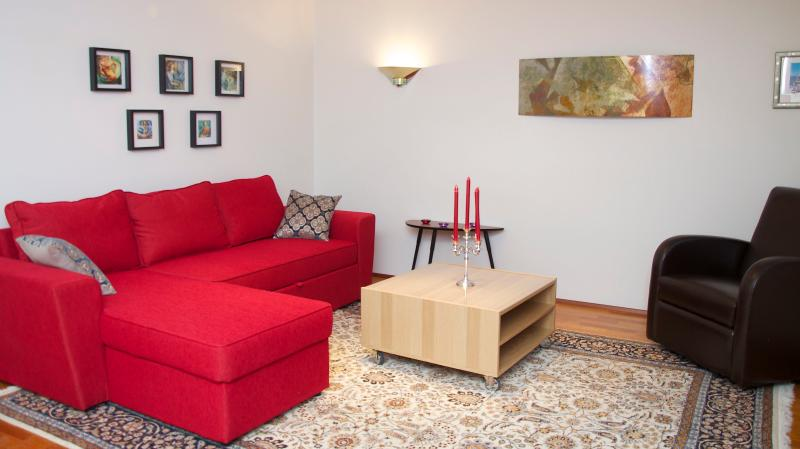 Extremely nice and spacious apartment  in centrum, vacation rental in Reykjavik