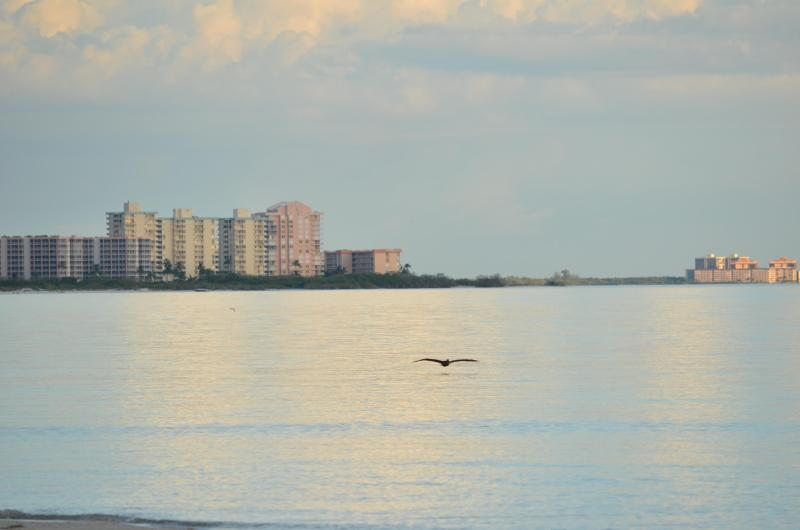 Adorable Beach Apartment - Safe, Sanitized, and Private, holiday rental in Fort Myers Beach