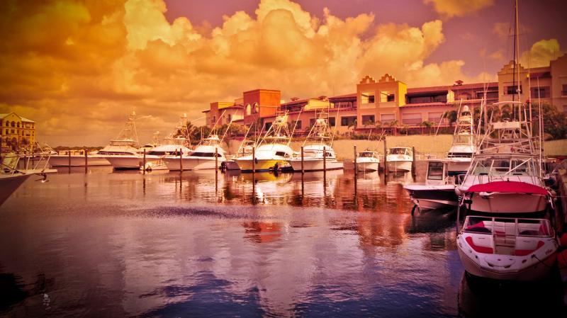 Cap Cana Marina