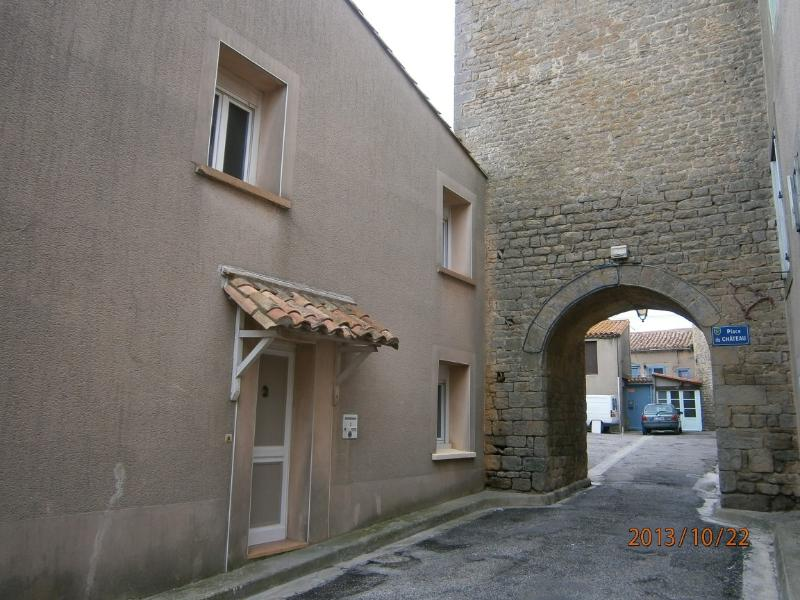 Spotinfrance - near Carcassonne, vacation rental in Aragon