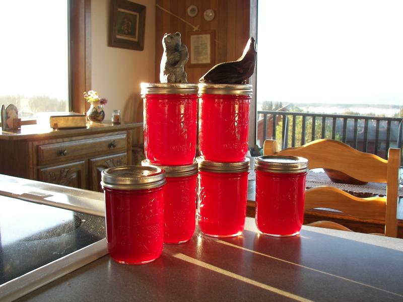Homemade Rasberry jelly to go with your complimentary Sourdough Scones