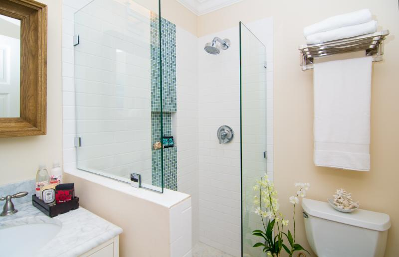 Bathroom number 4/powder room. Downstairs with shower