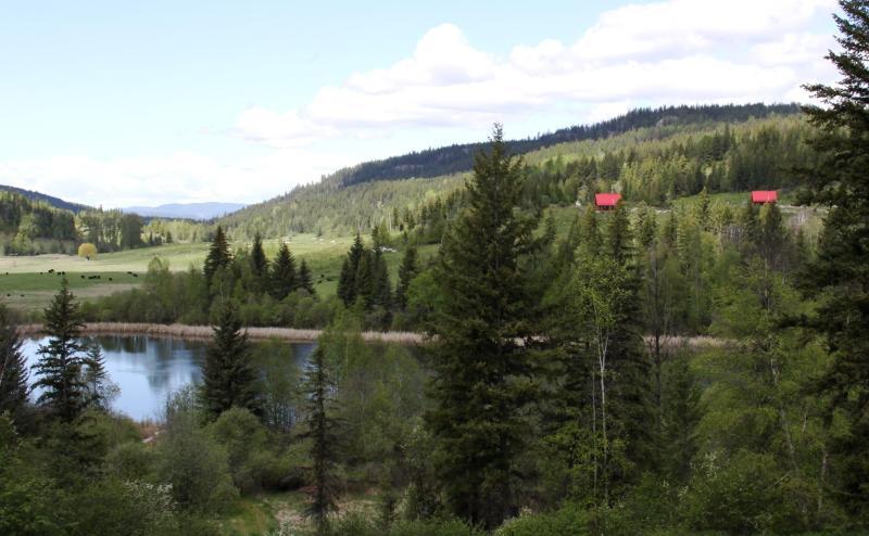 Cabin 2 Bear Valley Highlands, location de vacances à Cherryville