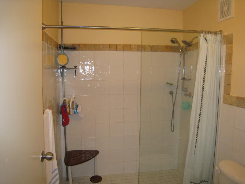 Full Spacious Double Shower very/private for Master Room including a KING Bed