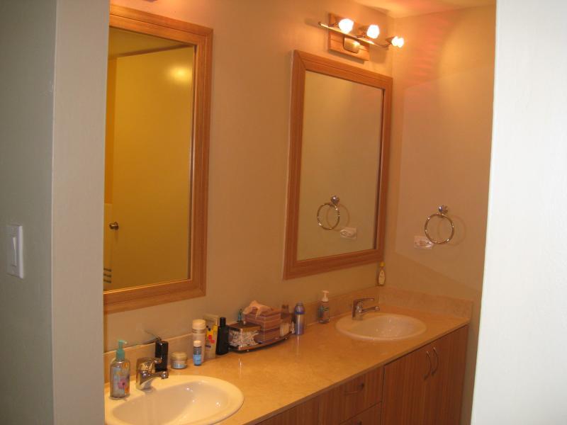 Master Room w/ double Vanity.. very spacious...
