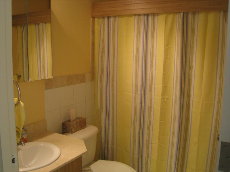 Full Shower very Private for Guest full with tub and hand shower