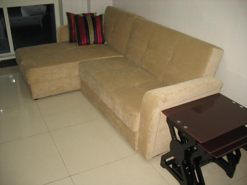 Living Area: Comfortable L-shaped sofa bed