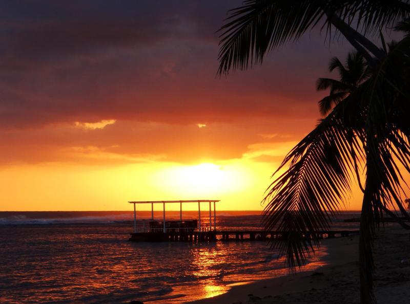 Playa Cafe del sol